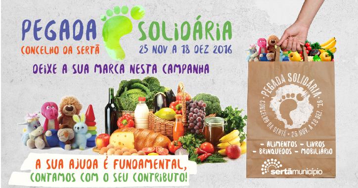 event-pegada-solidaria-16