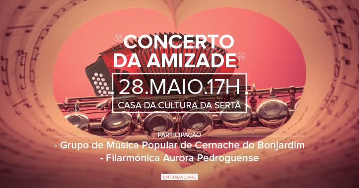 event-concerto-amizade